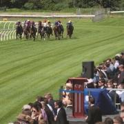 Horse race at Toowoomba race track