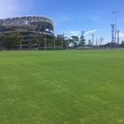 NRL training facility turf